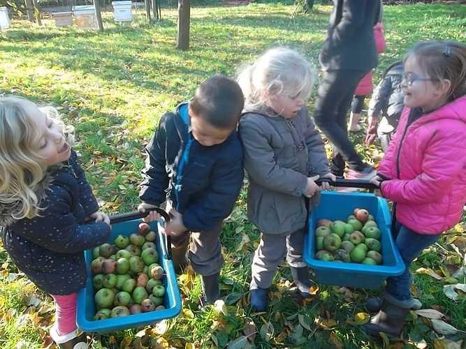 Découverte de la pomme à la ferme de la Ville Oger sam3492-1024x768