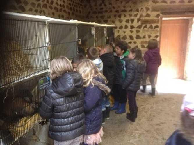 """Journée """"pain"""" à la ferme de la Ville Oger img2792"""